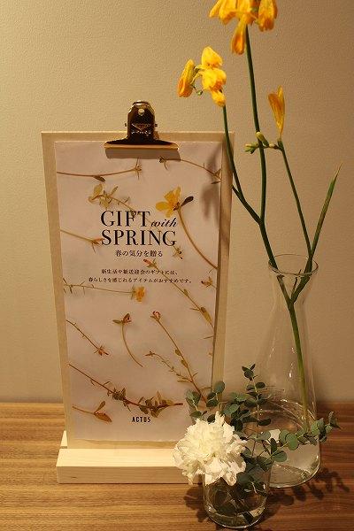 春の御挨拶ギフト